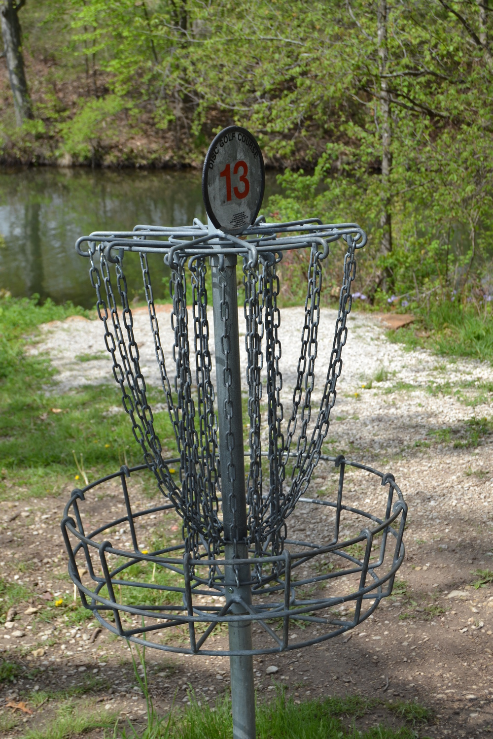 Disc Golf Anyone?