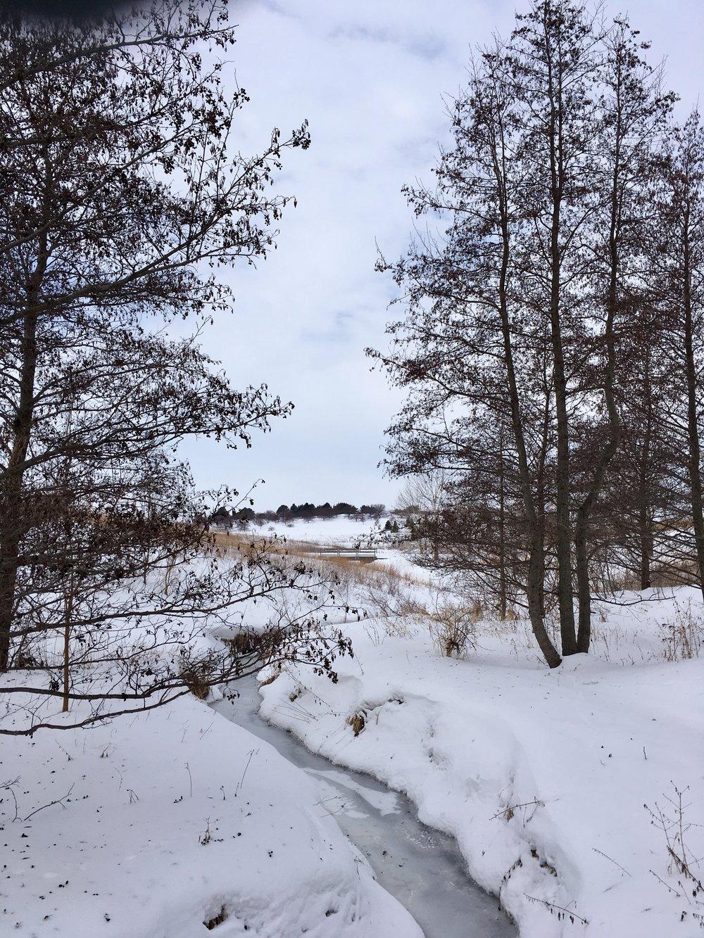 Leaf Walking Trail