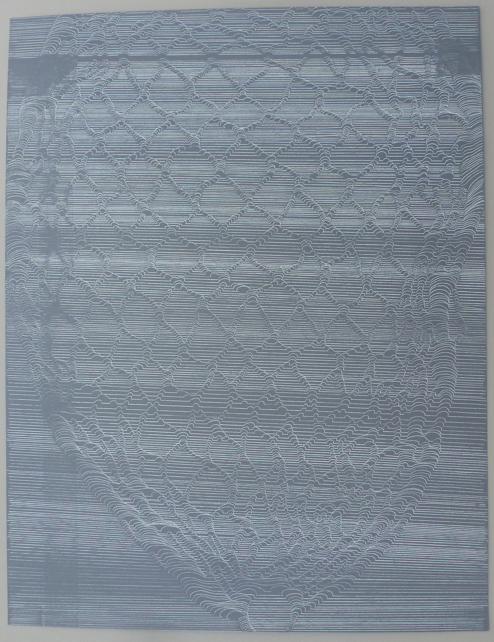 "White Net #3 , 2014, white transfer on paper, H 19.5"" x W 25.5"""