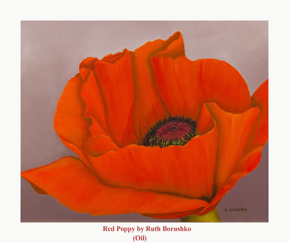 red-poppy-rb-oil.jpg