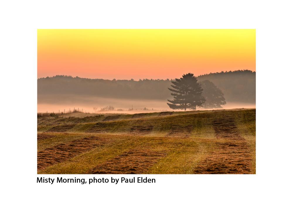 Misty Morning, Paul Elden copy copy.jpg