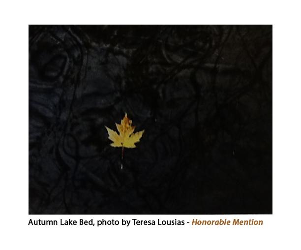 T Louisias Autumn Lake copy copy.jpg