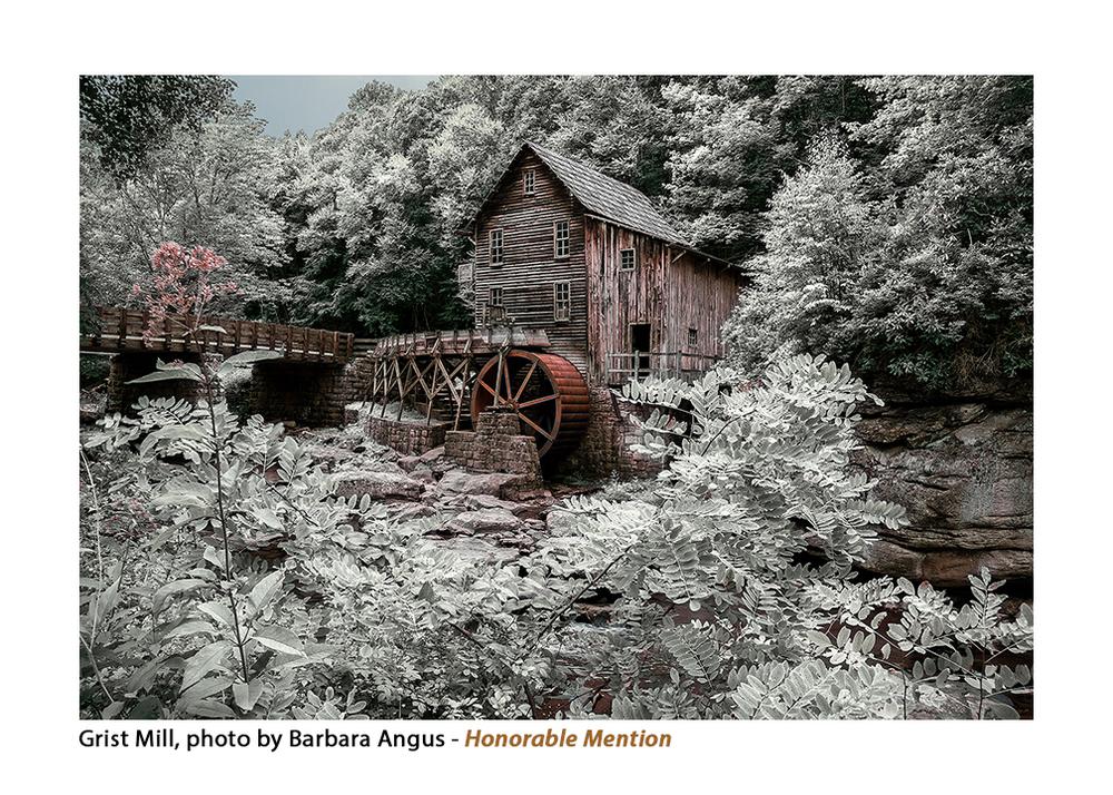 Grist Mill, Barbara Angus copy copy.jpg