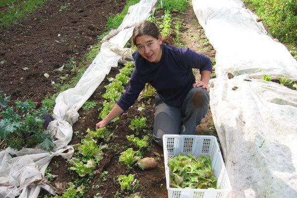 Marika,  Vancouver Island Farm # 1