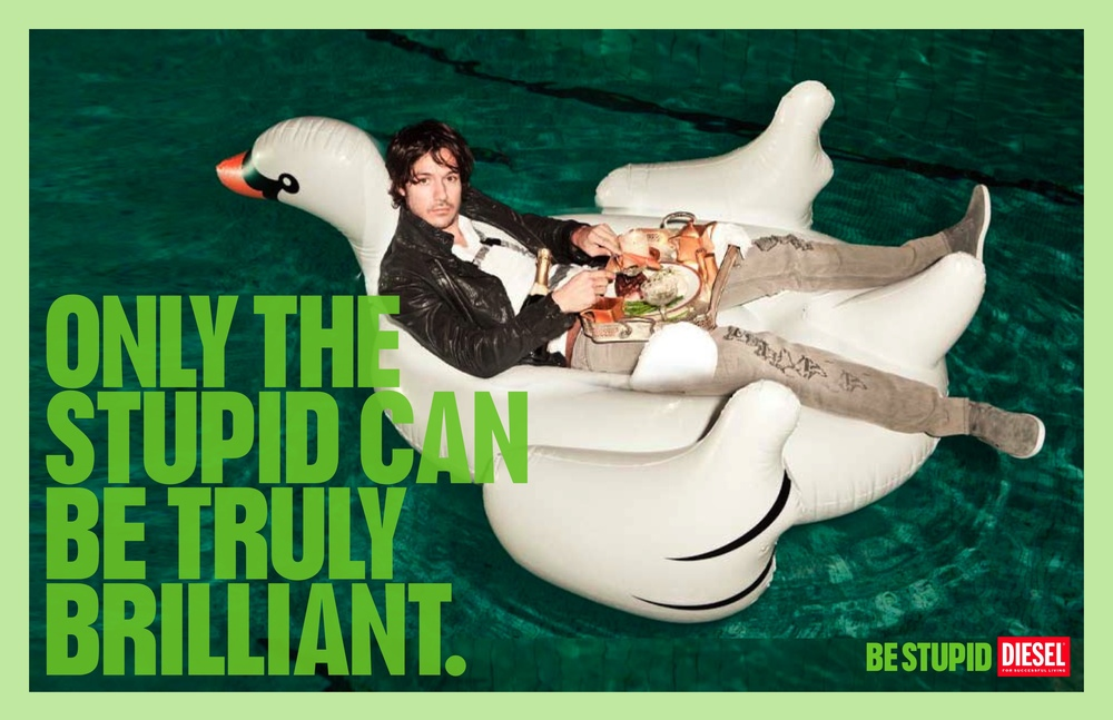 Stupid Can Be Brilliant (Swan).jpg