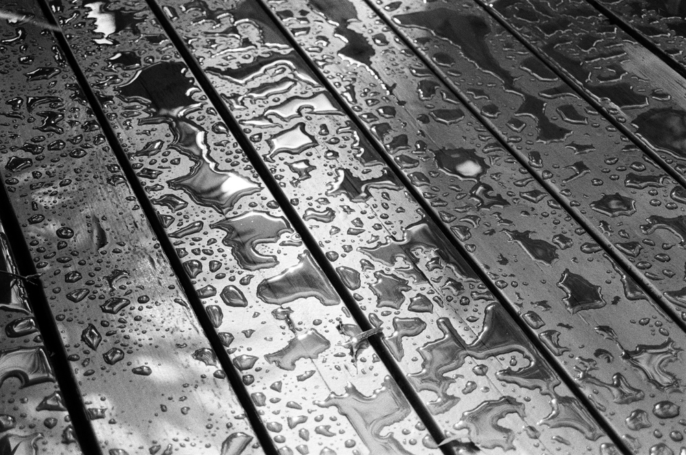 After the Rain (Shot on Ilford HP5 film)