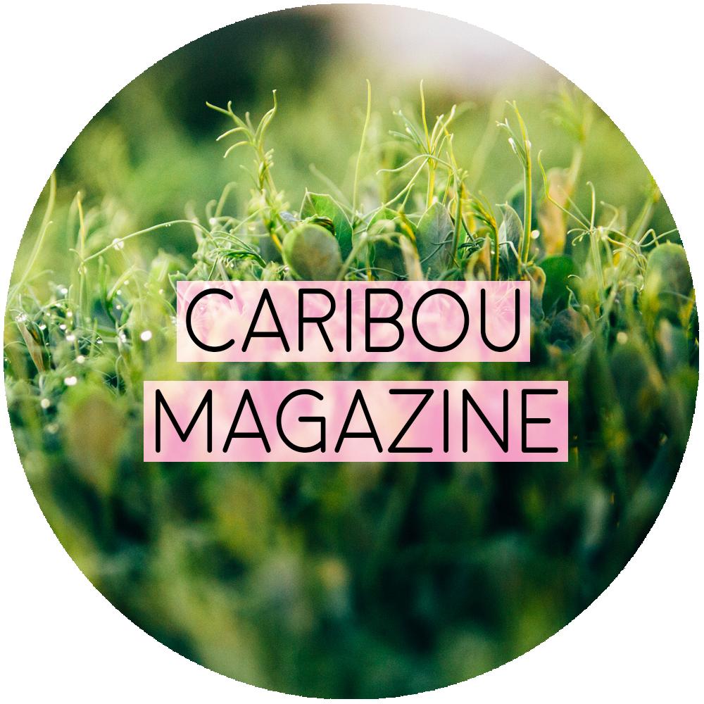 Caribou Magazine Sonia Primerano Lifestyle Photography