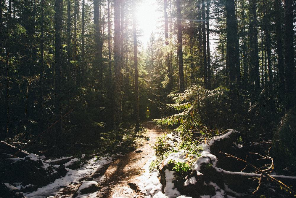 Sonia Primerano Mount Rainier hike