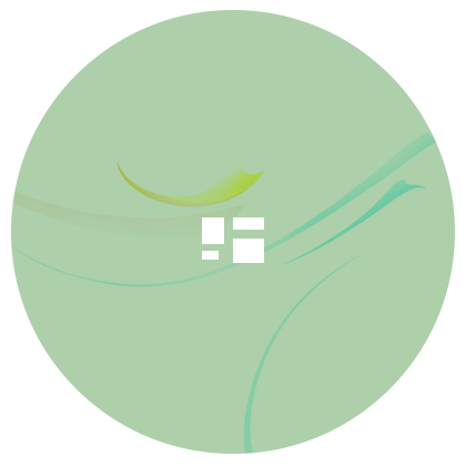 Design / Dev