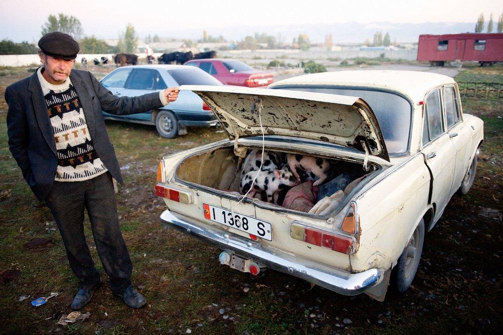 Piglet Salesman - Karakol, Kyrgyzstan