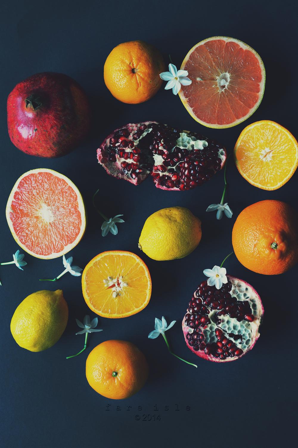 citrus still 1 web.jpg