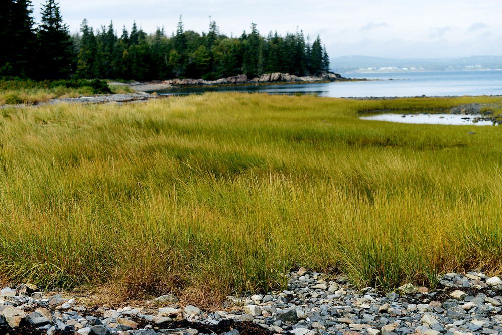 Maine via Fare Isle Blog