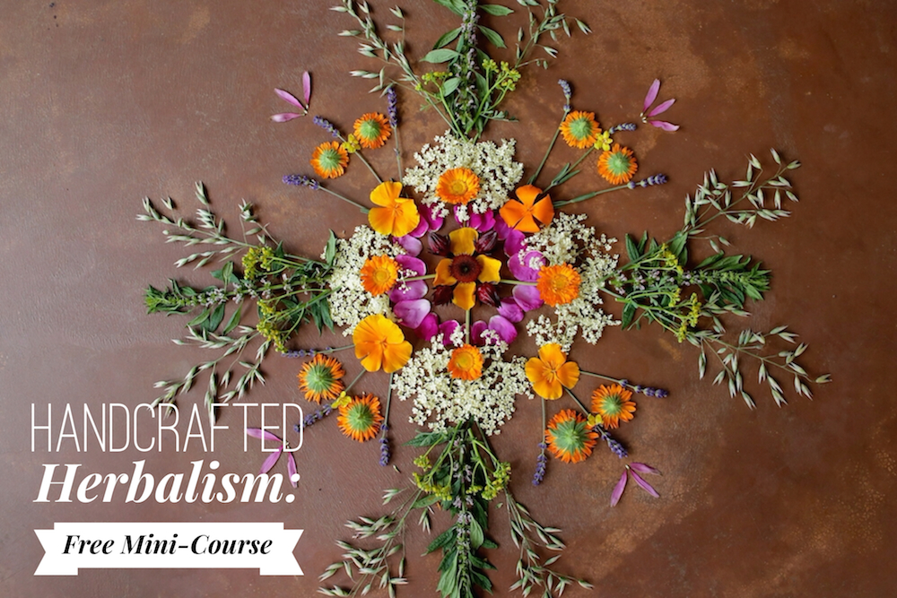 Handcrafted Herbalism: Free Mini-Course