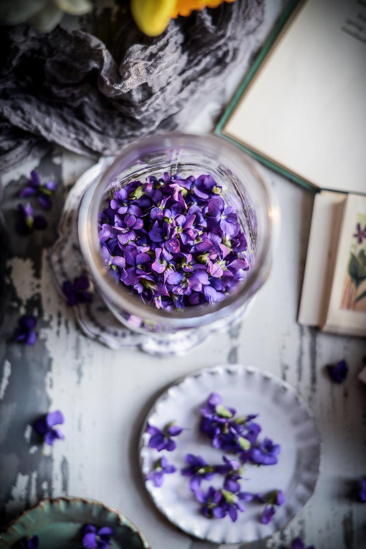 Wild Violet Syrup & Violet Magical Color-Changing Pink Lemonade