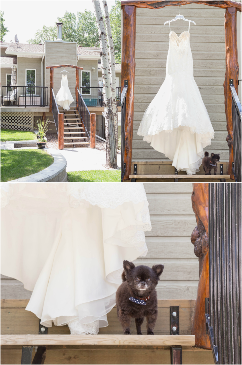 elkwater_wedding_photography_01.png