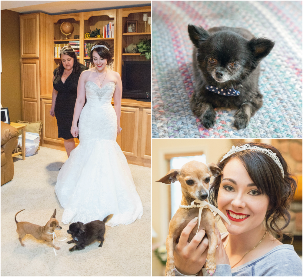 elkwater_wedding_photography_07.png