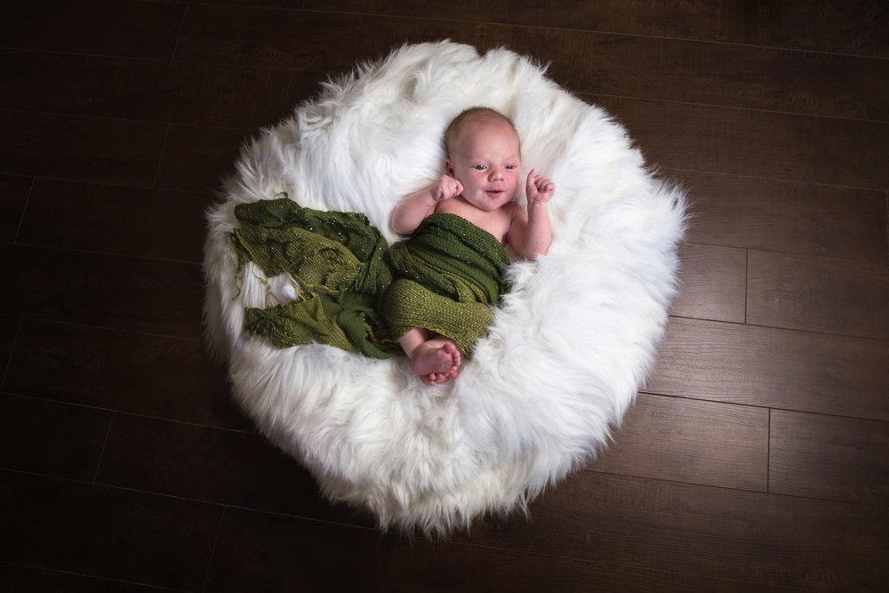 Leo_newborn2017_09.jpg