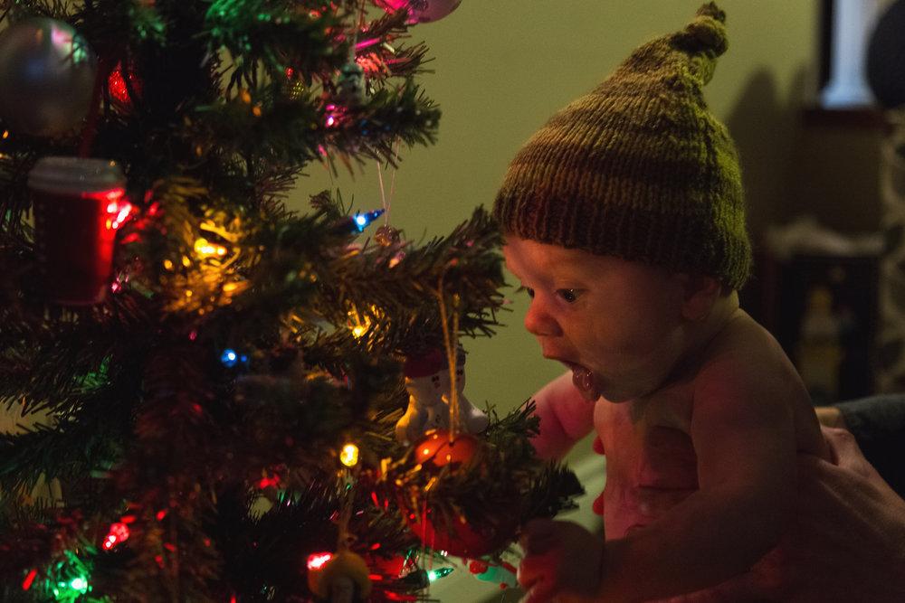 Christmas_2017_23.jpg