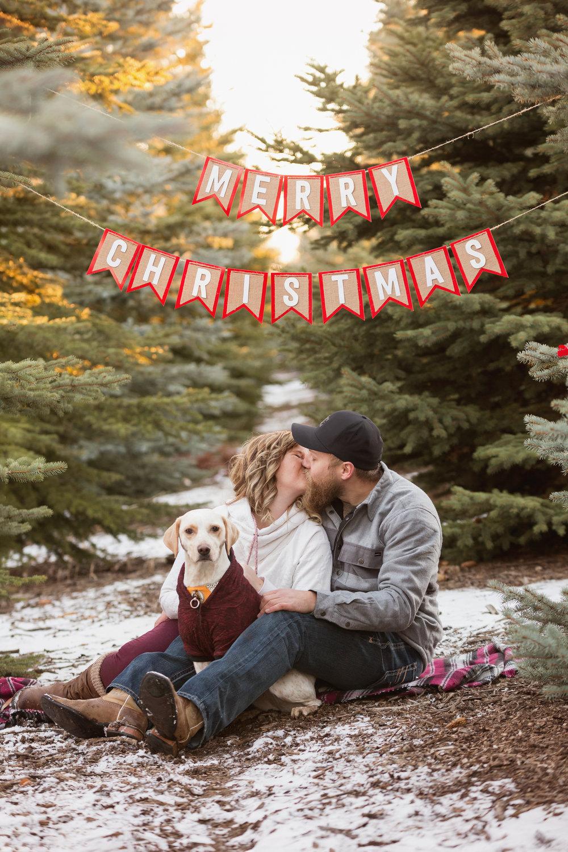 Christmas_2017_10.jpg
