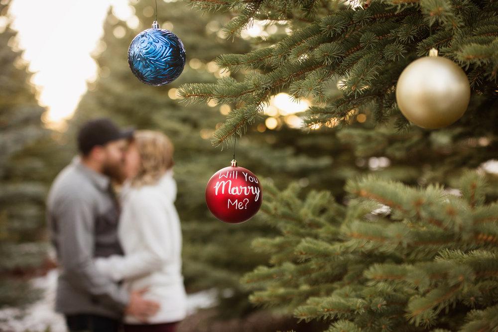 Christmas_2017_38.jpg