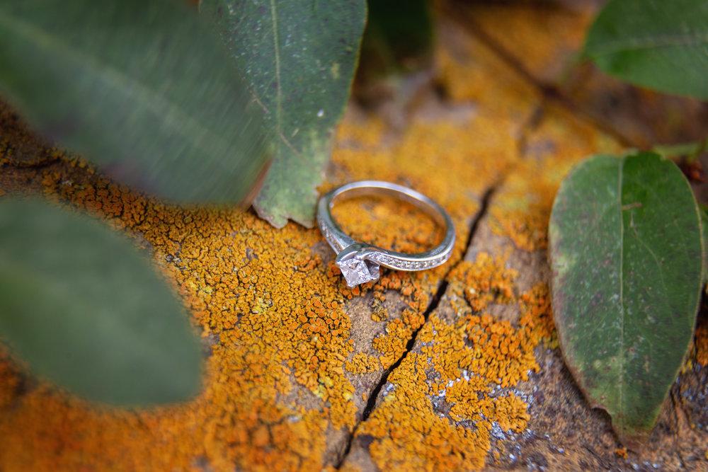 Engagement_67.jpg