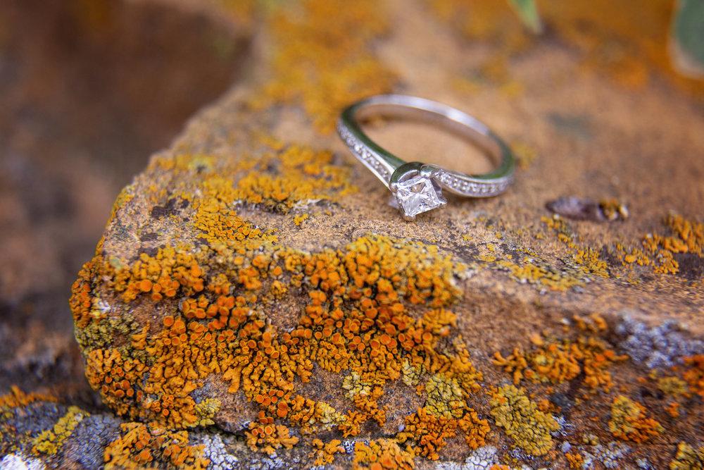 Engagement_68.jpg