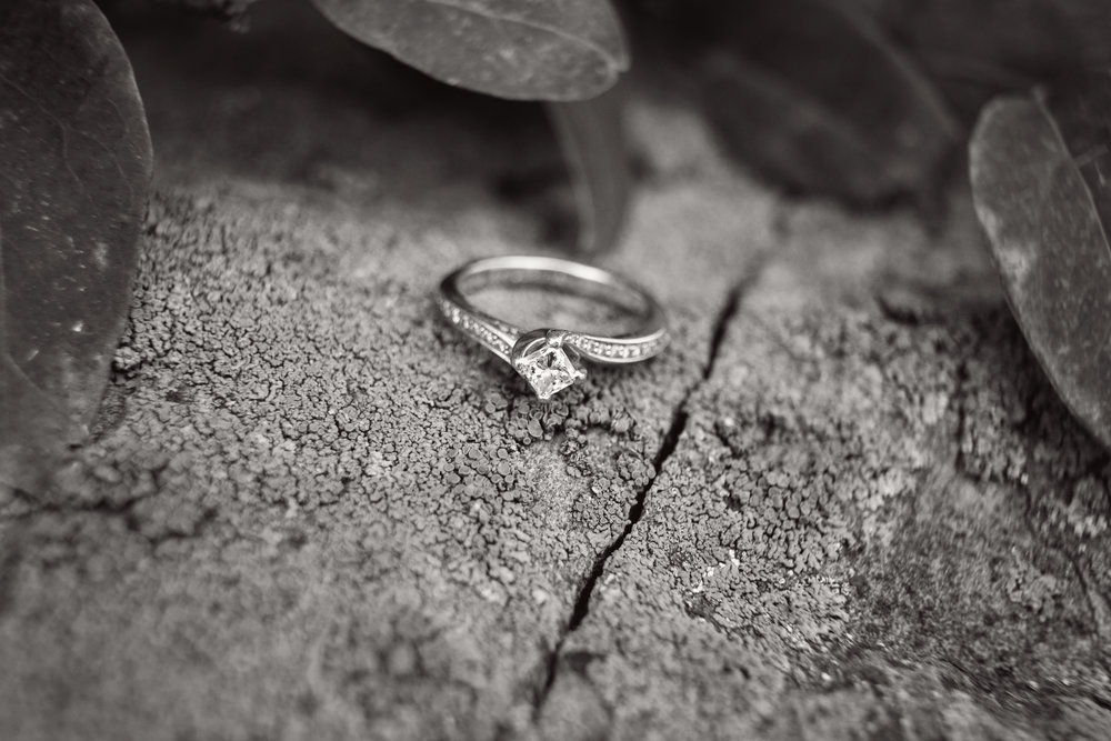 Engagement_69_bw.jpg