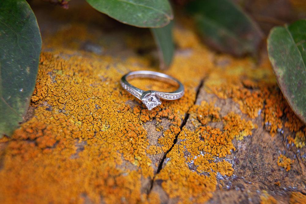 Engagement_69.jpg
