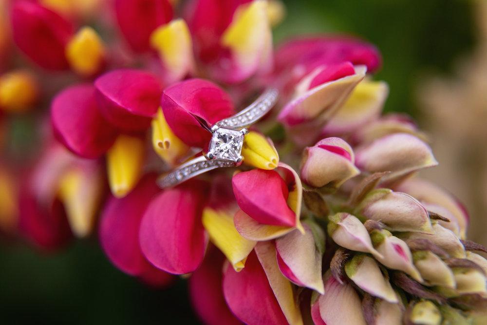 Engagement_70.jpg