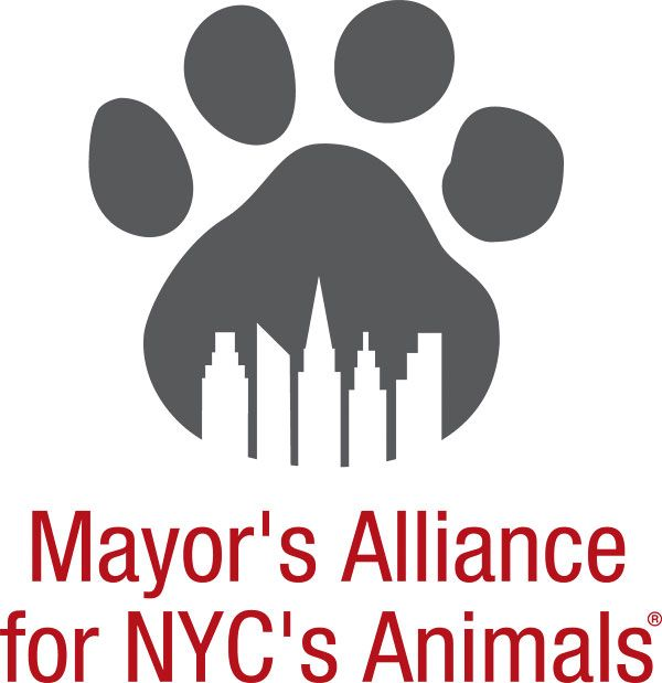 http://www.animalalliancenyc.org/