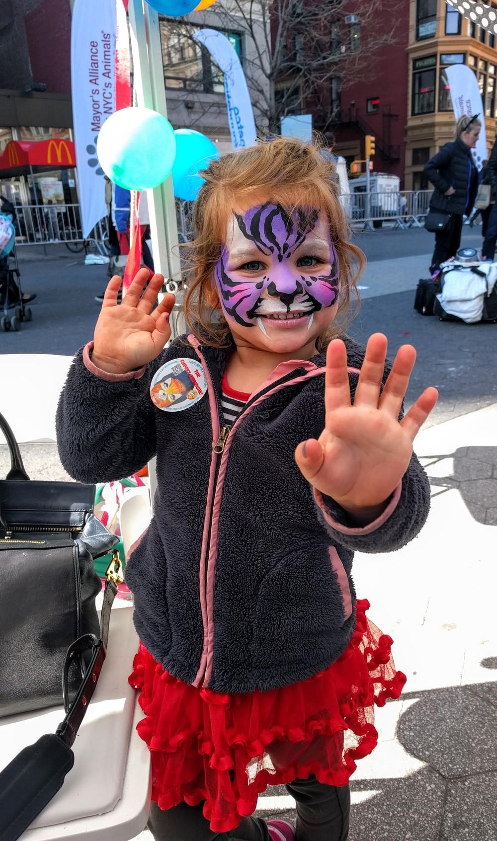 adoptapalooza april 2015 purple tiger.jpg