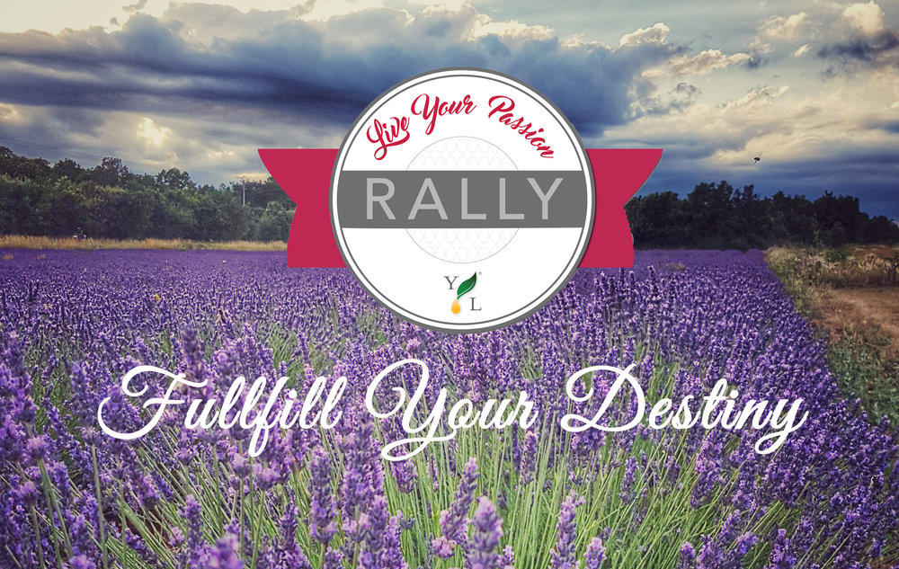 NO-yl-rally-lavender-field.jpg