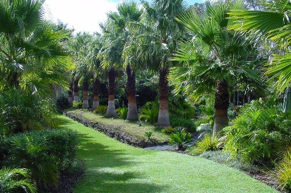 Display Garden 11 04 10 022.jpg