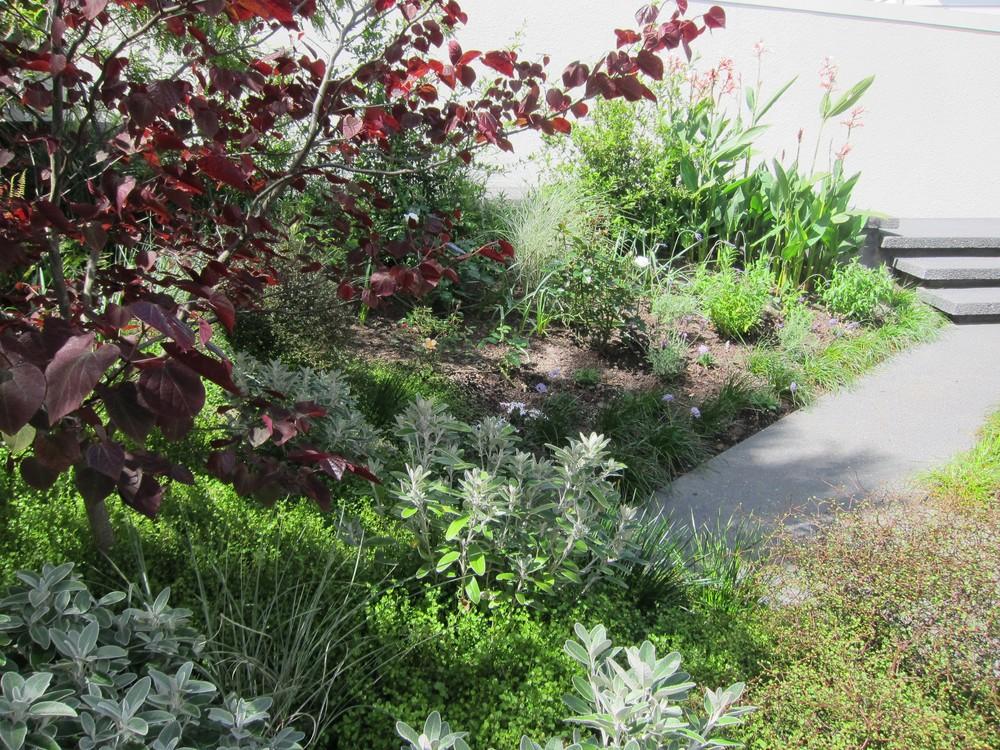 epsom-garden-1.jpg