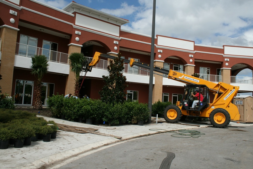 Town Center installing trees, 1600 pixels.jpg