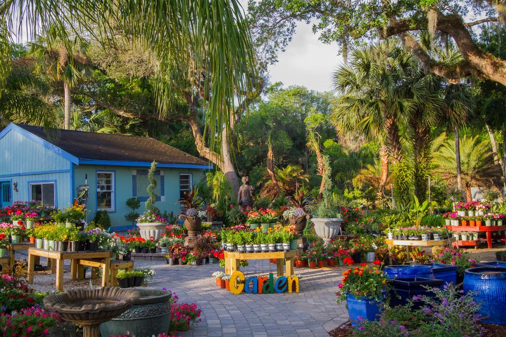 Palm Coast Florida Garden Center Hammock Gardens
