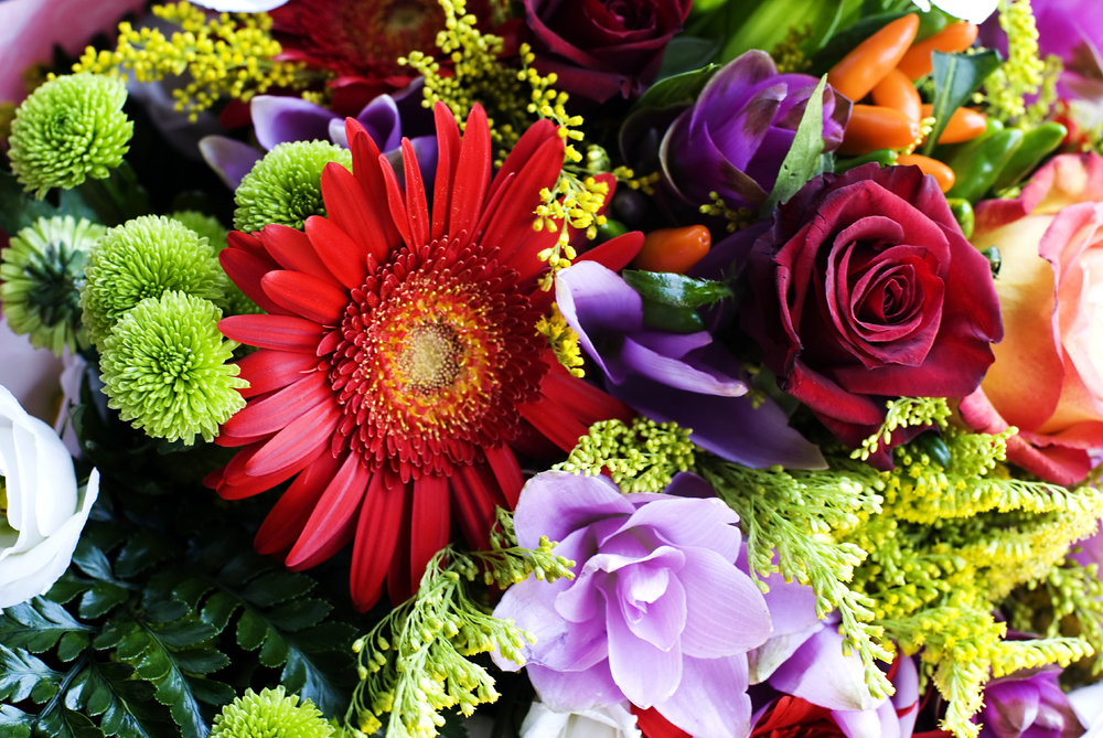 iStock_000010788646_Medium floral department.jpg