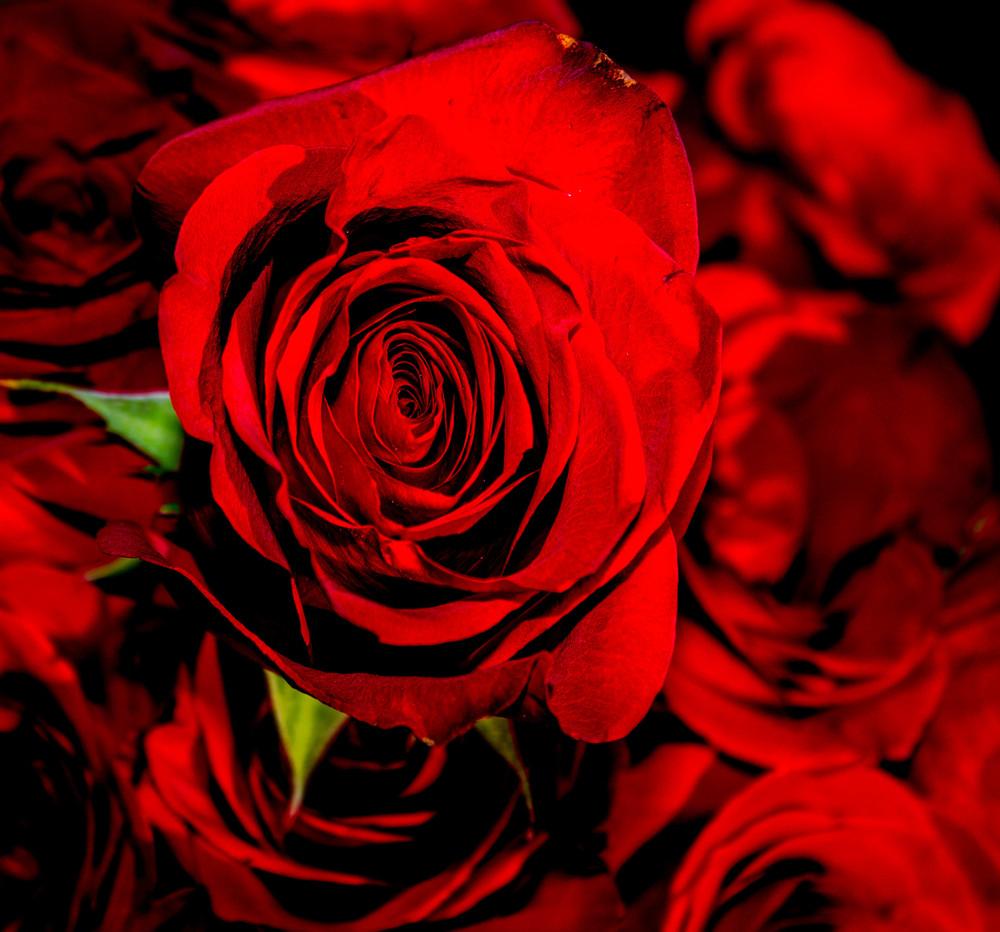 Hammockgardens valentines-2.jpg