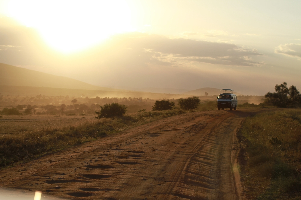 On Location: the Serengeti.