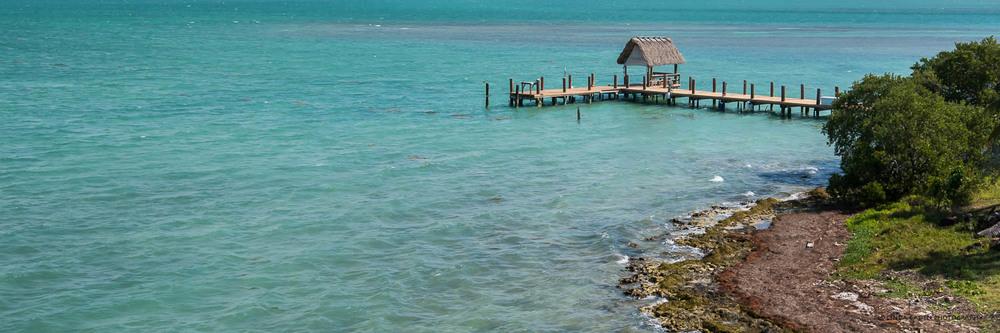 One Particular Harbor