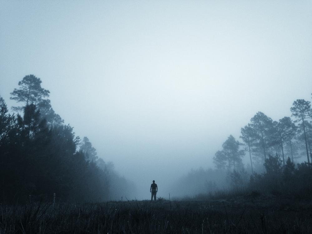Lost in the Fog.JPG