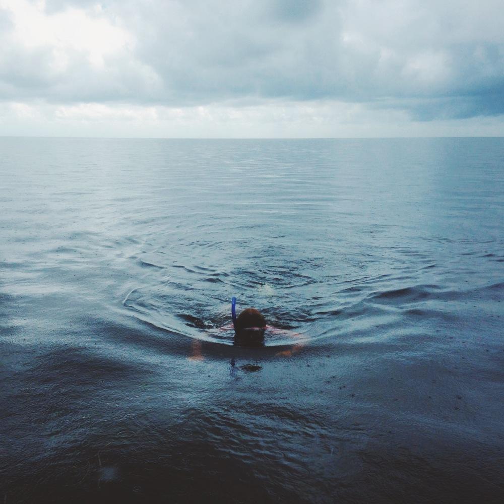 Steinhatchee Snorkeling