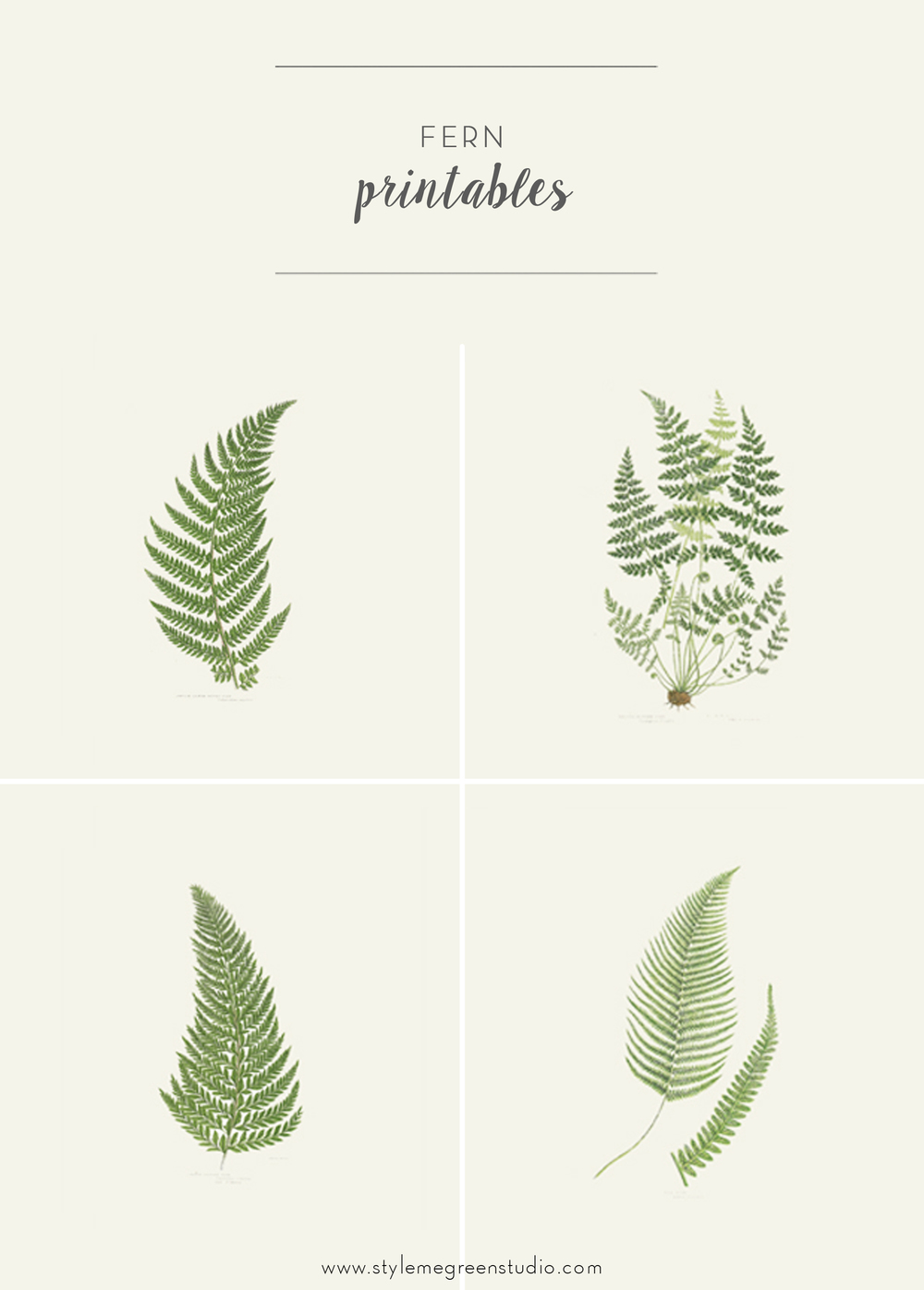 FERN COLLECTION FREE PRINTABLES Style Me Green