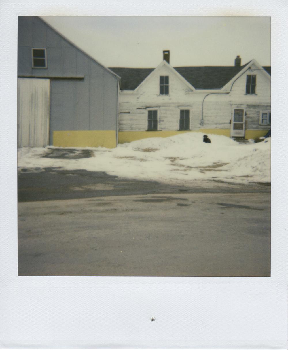 jlaurence-polaroid-023.jpg