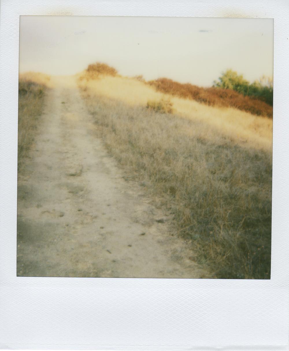 jlaurence-polaroid-044.jpg