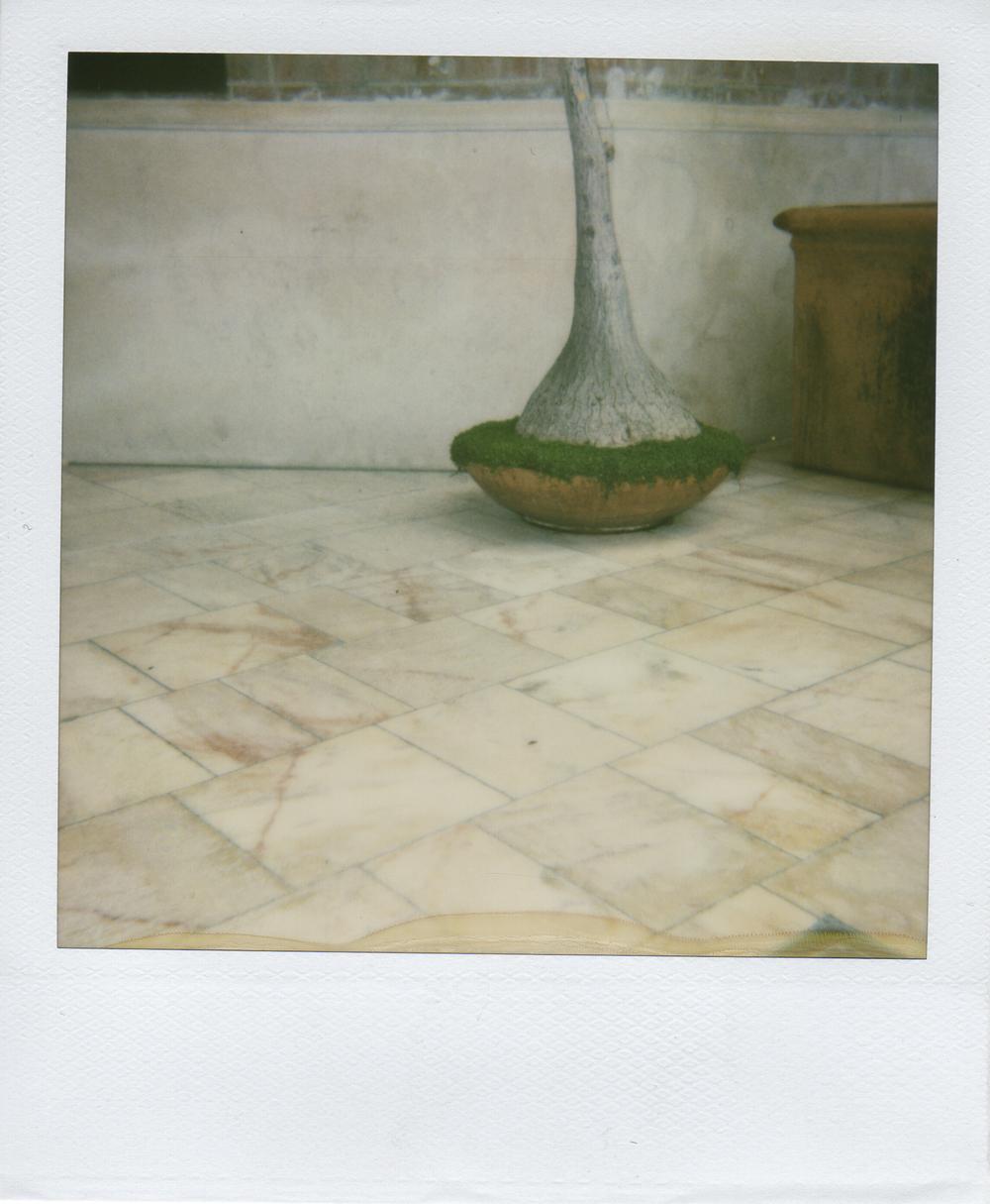 jlaurence-polaroid-046.jpg