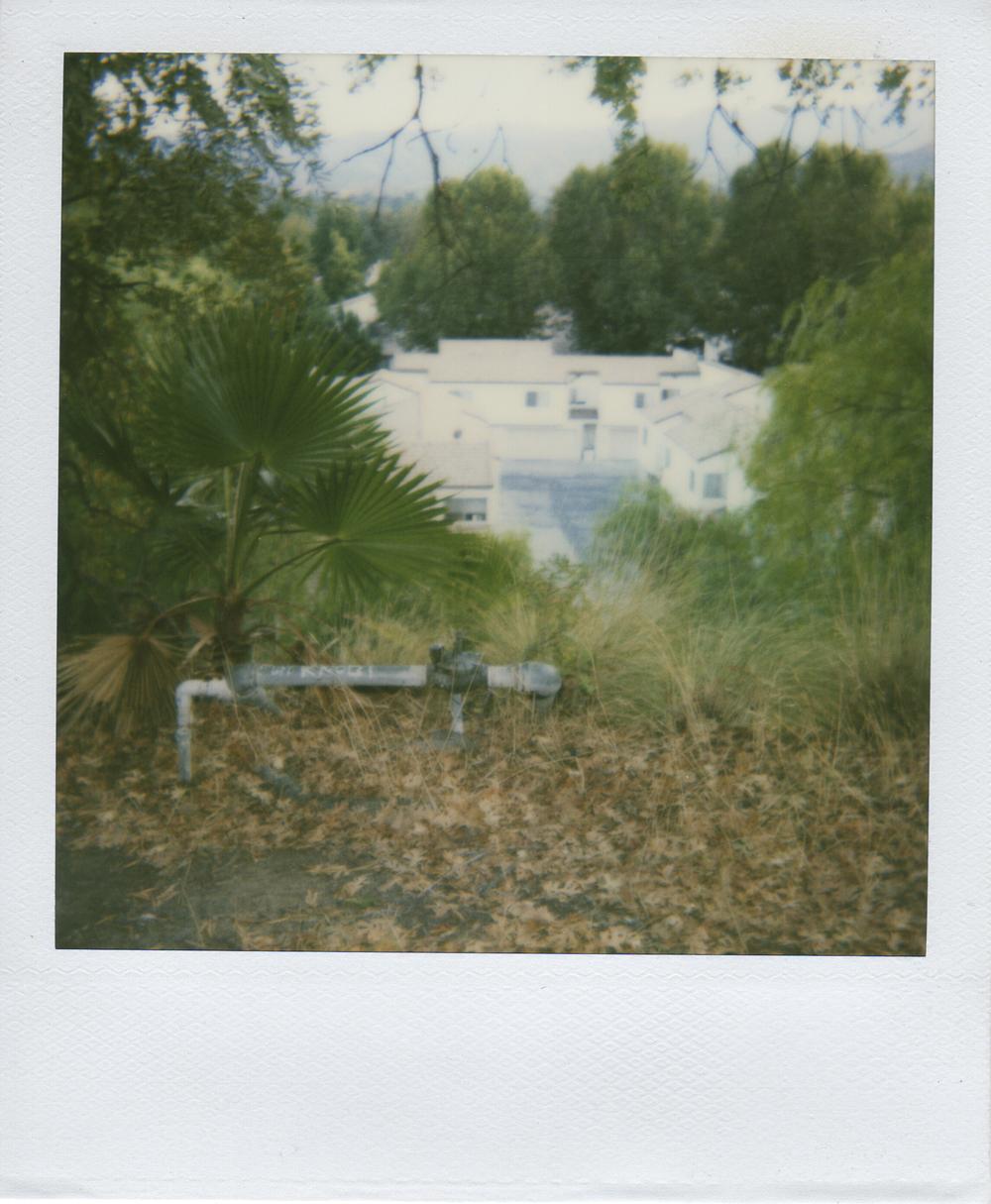 jlaurence-polaroid-054.jpg