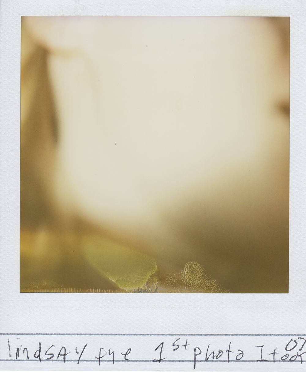 jlaurence-polaroid-093.jpg