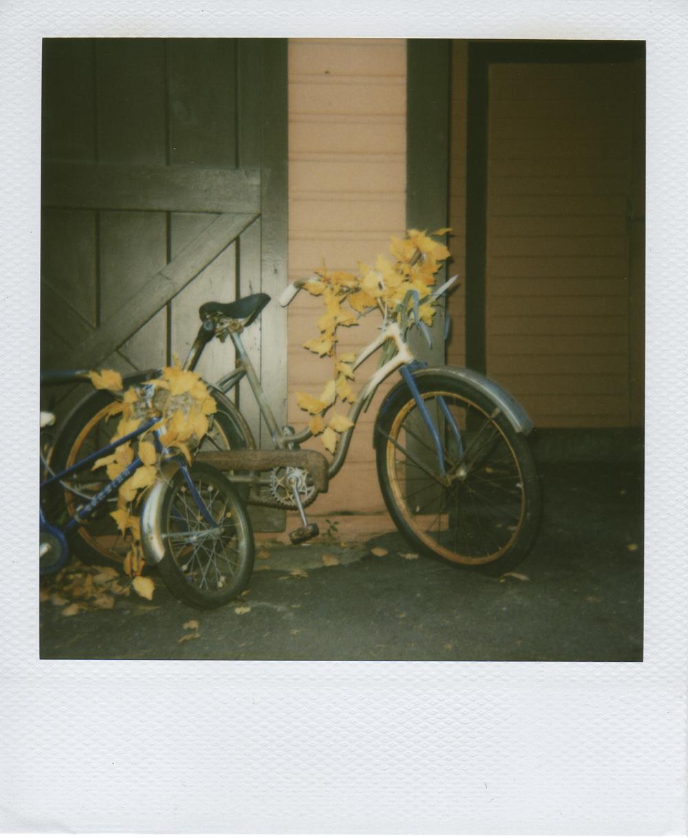 jlaurence-polaroid-104.jpg
