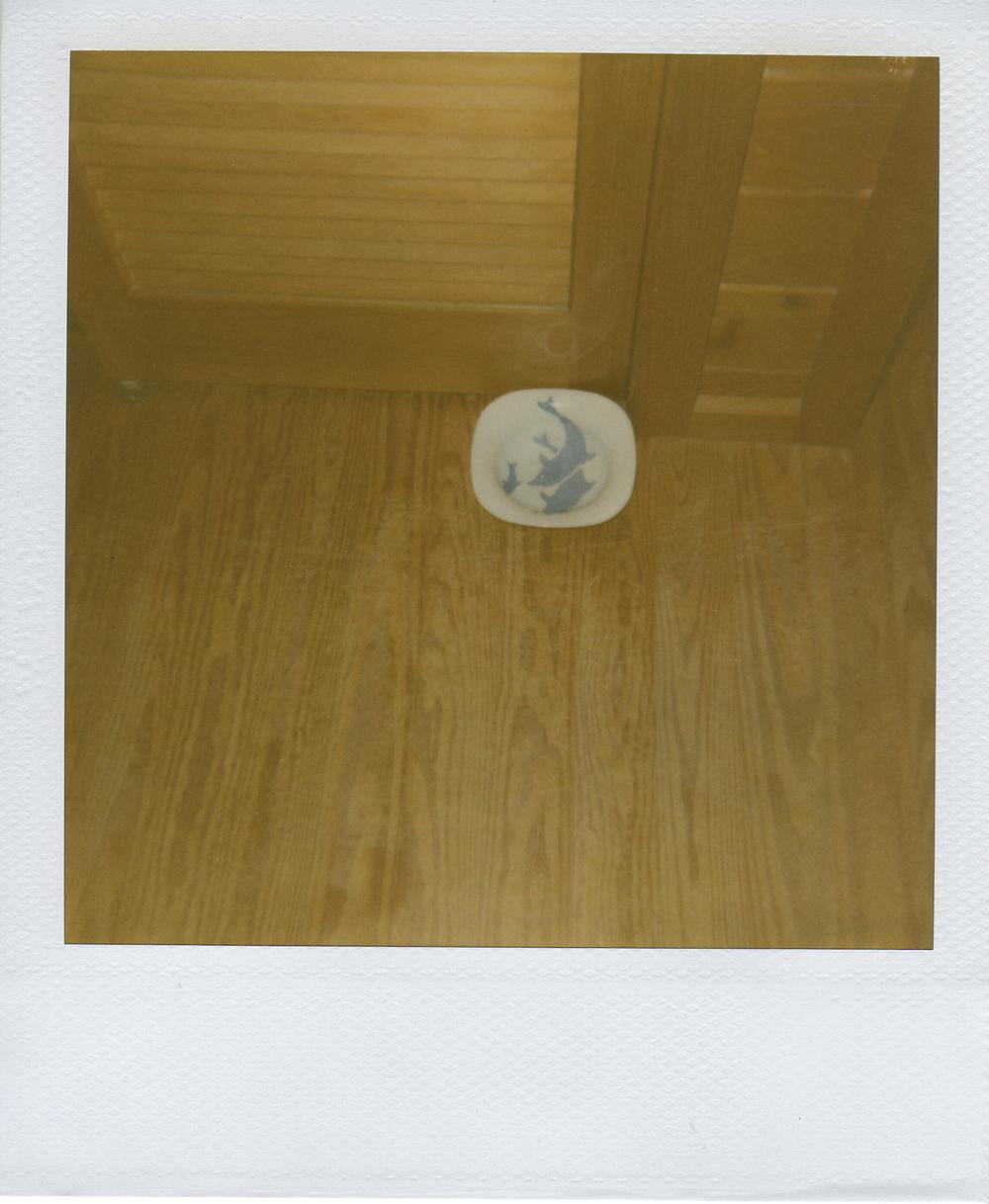 jlaurence-polaroid-114.jpg